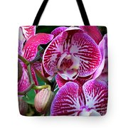 Radiant Orchid  Tote Bag