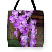 Orchid Beauties Tote Bag
