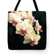 Orchid Blossom Tote Bag