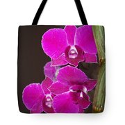 Orchid Branch Tote Bag