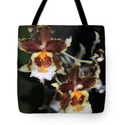 Orchid Brown Yellow White Macro Tote Bag