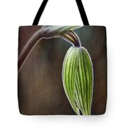 Orchid Bud Tote Bag