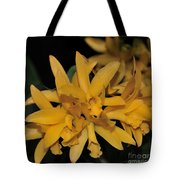 Orchid Cattleya Golden Sparkle 231 Tote Bag