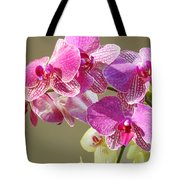 Orchid Flowers Art Prints Pink Orchids Tote Bag