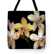 Orchid In Blossom Tote Bag
