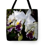 Orchid Laeliocattleya Lucie Hausermann With Buds 4074 Tote Bag