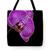 Orchid On Black Background Tote Bag