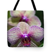 Orchid One Tote Bag