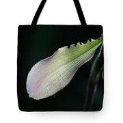 Orchid Petal Tote Bag