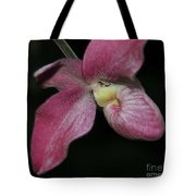 Orchid Phragmipedium Hanna Popow 2 Of 2 Tote Bag