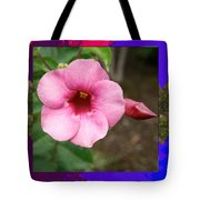 Orchid Pink Flower Photographed At Costa Rica Sensual Smile Graphic Dital Painted Background Ideal Tote Bag