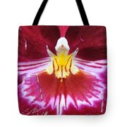Orchid Pink Yellow White Tote Bag