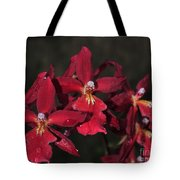 Orchid Red Burrageara Living Fire  Glowing Ember Tote Bag