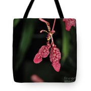 Orchid Red Renanthera Unnamed Tote Bag