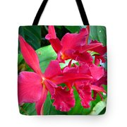 Orchid Series 3 Tote Bag