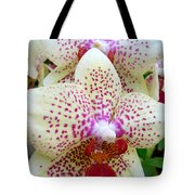 Orchid Series 5 Tote Bag