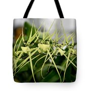 Orchid Spikes Tote Bag