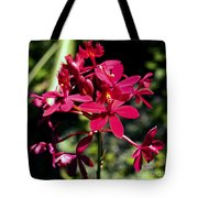 Orchid Study V Tote Bag