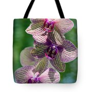 Orchid Two Tote Bag