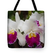 Orchids 198 Tote Bag