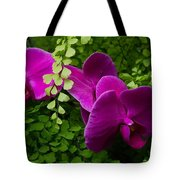 Orchids And Baby Tears Tote Bag