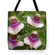 Orchids Four Tote Bag