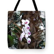 Orchids In The Opryland Hotel In Nashville Tennessee Tote Bag