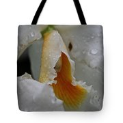 Orchid's Inner Glow Tote Bag