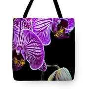 Orchids On Black Background Tote Bag