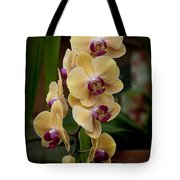 Orchids Pictures 10 Tote Bag