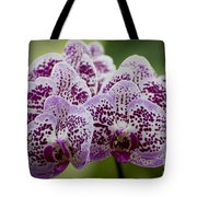 Orchids Pictures 11 Tote Bag