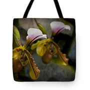 Orchids Pictures 30 Tote Bag