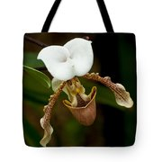 Orchids Pictures 31 Tote Bag