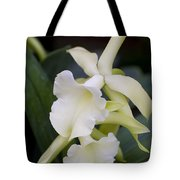 Orchids Pictures 53 Tote Bag
