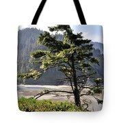 Oregon - Heceta  Tote Bag
