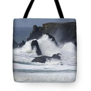 Oregon Coast Furrious Waves 1 Tote Bag