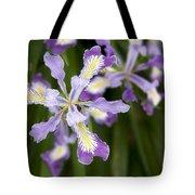 Oregon Irises In Bloom Closeup Tote Bag