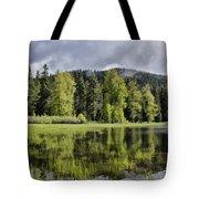 Oregon Lake Tote Bag