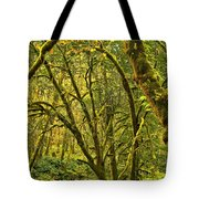 Oregon Rainforest Tote Bag