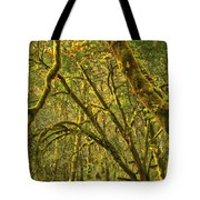 Oregon Rainforest Portrait Tote Bag by Adam Jewell