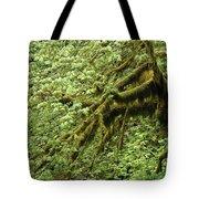 Oregon Tree Tote Bag