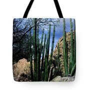 Organ Pipe Tote Bag