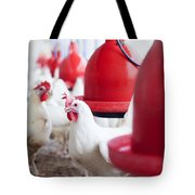 Organic Chicken Coop  Tote Bag