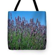 Organic Lavender Tote Bag