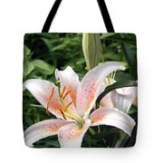 Oriental Hybrid Lily In White Peach And Pink  Tote Bag
