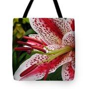 Oriental Hybrid Lily Named Dizzy Tote Bag