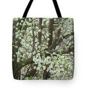 Oriental Pear Tree Tote Bag