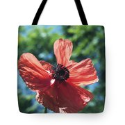 Oriental Poppy Tote Bag