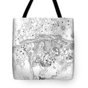 Origins Of Species Tote Bag