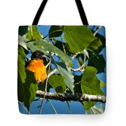 Oriole Watching Tote Bag